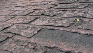 Another sign that your Charleston, South Carolina roof needs replaced