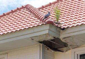 7 warning signals for roof repair contractors in Charleston, SC
