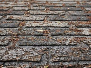 Charleston, SC Roofing Contractors repairing missing or cracked roof shingles
